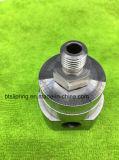 Aço inoxidável fazendo à máquina de giro do CNC das peças do CNC da alta qualidade