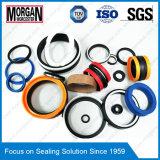 Varied кольцо уплотнения высокого качества Viton/PTFE/Nitrile/Silicone резиновый