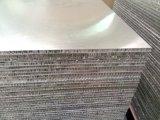 Los paneles de nido de abeja de color Ral de aluminio pintado