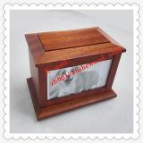 محبوب رماد صندوق يستطيع حافظت محبوب يعيش صورة