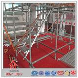 Stahlstrichleitern des jobstep-Q235 für Arbeitskräfte auf Gestell-Aufbau
