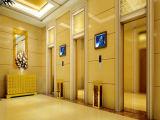 Ascenseur de passager de FUJI de levage