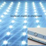 striscia rigida chiara di 12V LED per le caselle chiare