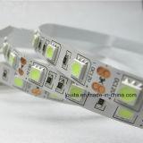 최상 12V 5050 LED 지구 빛