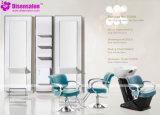 شعبية عالية الجودة صالون الأثاث شامبو الحلاق صالون كرسي (P2009)