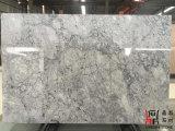 De natuurlijke Plakken van Carrara Praag van het Zinkwit Grijze Marmeren voor de Tegels/Countertops van de Muur