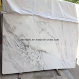 Bianco Statuario Venato Bookmark Combinado Cut-to-Size para Pisos / Passos / Countertops / Vanity Tops / Bathroom Tiles