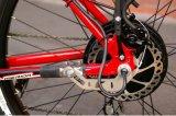 Motore senza spazzola della bicicletta del motore del mozzo di CC del mackintosh (48V 1000watt)