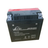 Dry Charged Mf AGM Lead Acid Battery for Motorcycle