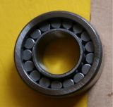 Nu2201EV zylinderförmiges Rollenlager, China-Fabrik-/NTN/SKF-Rollenlager
