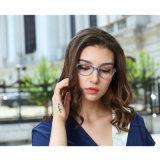 Optische Frames van de Acetaat van Eyewear Mazzucchelli van de fabriek en van de Ontwerper de Professionele Met de hand gemaakte
