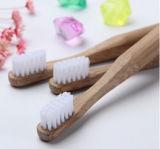 Toothbrush di bambù biodegradabile all'ingrosso di vendita caldo (BC-T1021)