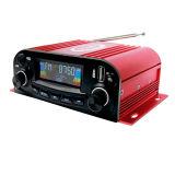 De Professionele Auto van de hoge Macht AudioMP3 met Afstandsbediening
