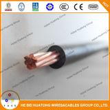 Одиночным AWG сели на мель сердечником, котор медный проводника PVC изоляции 6 75c или сухой электрический провод
