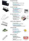 Reflector impermeable de IP65 300W LED con el Ce RoHS
