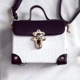 Piccoli sacchetti di spalla del più nuovo del coccodrillo della stampa del reticolo della borsa di modo di stile sacchetto della casella Sy8404