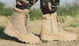 Cargadores del programa inicial calientes de la seguridad de Sandy de la alta calidad de la venta para los militares