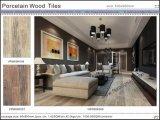 Azulejos de suelo de madera materiales de la porcelana de Bulding (VRW69K006)
