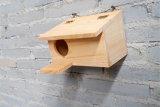 Casas de madera al aire libre preservativas del pájaro