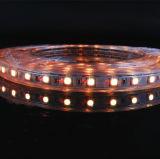 Van het LEIDENE van de hoogspanning 100-240V 5050 de Jaren Warraty Koper Wire/2 van de Strook/Enige Line/RGB