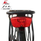 E-Bicyclette sans frottoir d'aluminium de moteur du bâti 36V 350W de l'alliage 700c (JSL033G-4)