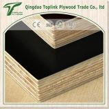 O tempo dois pressionou madeira compensada enfrentada película marinha/Shuttering do Poplar de 21mm