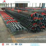 Costomized Stahlausdehnungsverbindung mit vielen Arten Modles