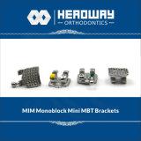 歯科歯科矯正学のMIM Monoblock小型Mbtブラケット