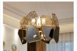 Populäre Spitzenentwurfs-hängende Lampen-Dekoration-Ausgangsbeleuchtung für Projekt