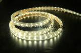 RGB Flex LED Strips with AC220V with EC RoHS