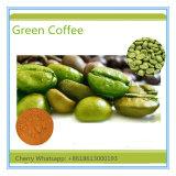 Café de régime de fines herbes lisse normal de la norme 100% de GMP