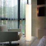 A cor que muda o diodo emissor de luz ilumina as lâmpadas de assoalho Oz-Al758 do escritório