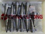 디젤 엔진 펌프 T 플런저 중국 디젤 연료 플런저 OEM 2 418 455 390