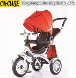 熱い販売の最近子供の三輪車は三輪車の赤ん坊の三輪車をからかう