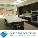 Rivestimento moderno modulare dell'impiallacciatura degli armadi da cucina della mobilia (ZY 1009)