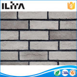 Pietra coltivata comitato del muro di mattoni della decorazione, mattone di fuoco per il riscaldamento del Furnac, Stonemould artificiale (YLD-15009)