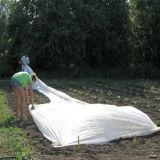 Cobertor de geada de flutuação da tampa da fileira