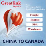 中国からのカナダへの速い空輸貨物か明白な交通機関サービス