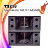 Ts218 de Professionele Luidspreker van DJ Subwoofer
