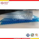 Твиновские листы поликарбоната полости стены для настилать крышу парника &Canopy (YM-PC-011)