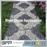 Normaler Glanz-Fluss-Stein-Kiesel für Park, allgemeiner Bodenbelag, Innendekoration-Stein