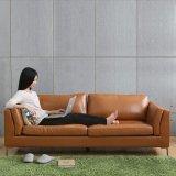 [جبنس-ستل] جلد أريكة وحديثة يعيش غرفة أريكة