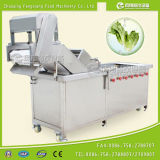 Mulit-Function Vegetable en Fruit Washing Machine met Water Cycle