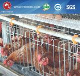 養鶏場の層のケージ(4L120)