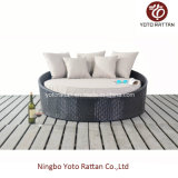 Daybed pequeno do Rattan ao ar livre no frame de aço (1114)