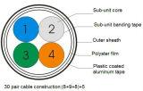 30 accoppiamenti di categoria 3 del cavo telefonico per la telecomunicazione esterna