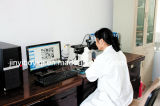 Mit-5300d Type di Metallographic Analyzer