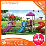 Het OpenluchtSpel van de Apparatuur van de Gymnastiek van het Speelgoed van het Pretpark