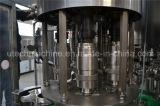 純粋な水瓶詰工場を完了しなさい