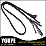 Mâle de prix usine au harnais électronique femelle de fil de haut-parleur de câble